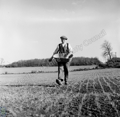 Farming, Mr W. Hinchcliffe, Westborough